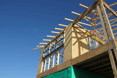 Timber Pest Inspections Pre Purchase Building Inspection